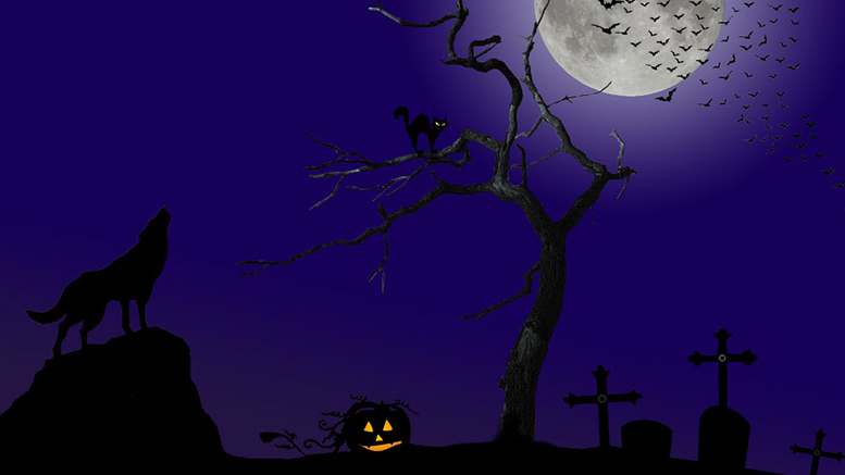 13 Things Around Wicked Winchester to Do on Halloween