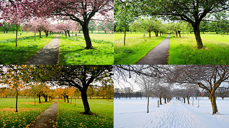 which is your favorite season
