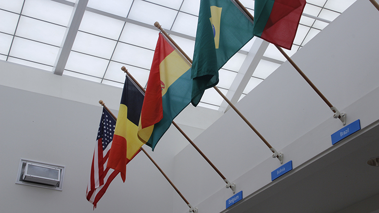 Mr. Hawkins and Millbrook's Flags